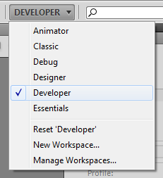 Developer Workspace Selection